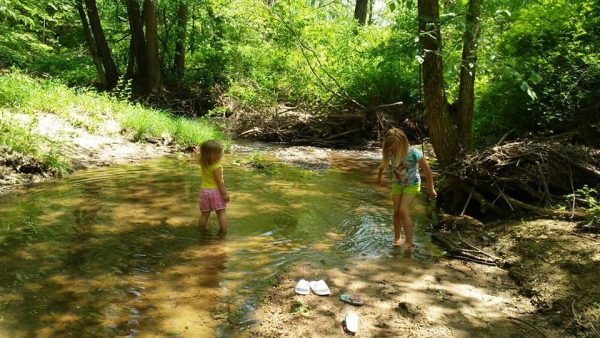 Children playing in shallow stream - homesteading