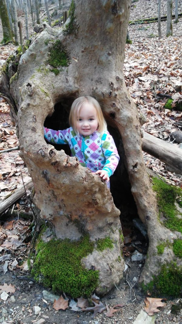Young Child standing in dead tree - homesteading