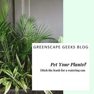 Pet Your Plants Blog Header - Native Plants Greenscape Geeks Indianapolis Landscaper