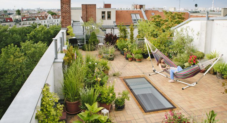 rooftop garden with pots and hammock