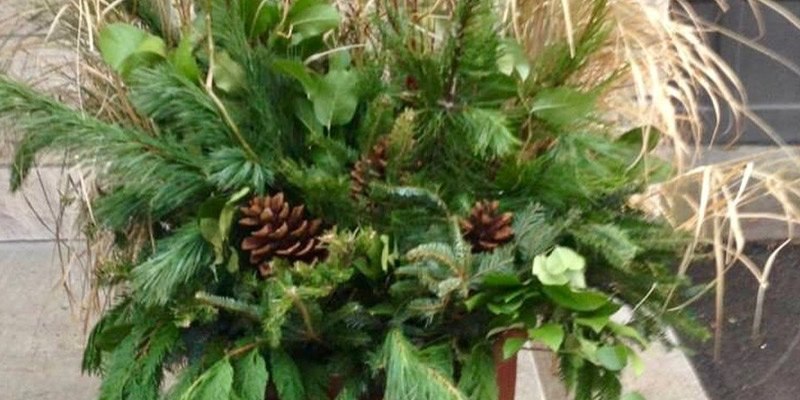 Holiday greenery decorations