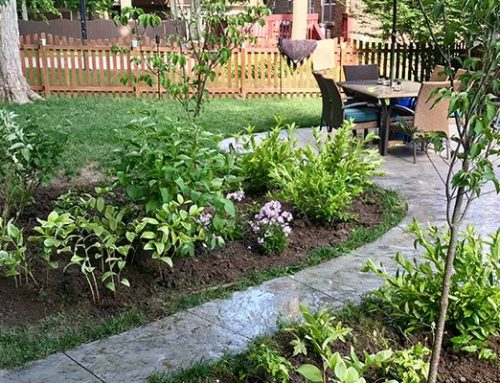 5 Different Types of Landscaping