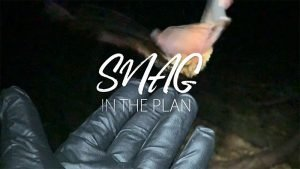 Snag in the Plan movie still - film festival