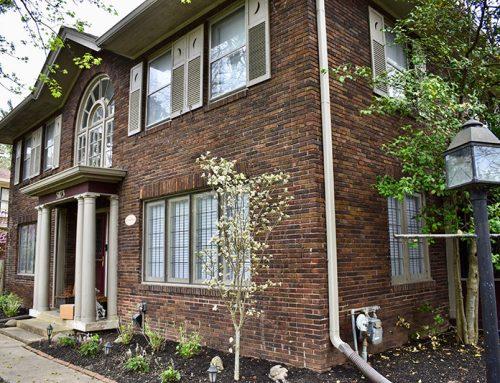 Irvington | Shade Loving Perennial Garden