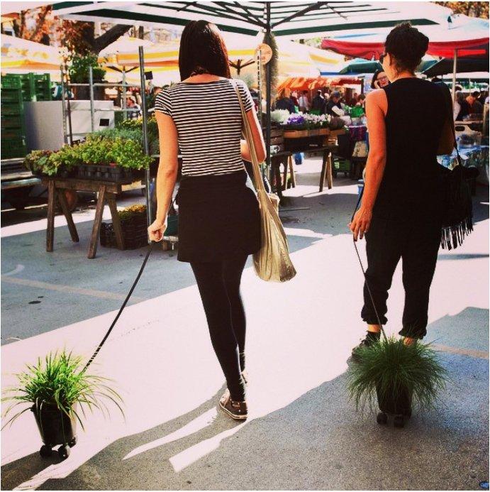Two women walking house plants