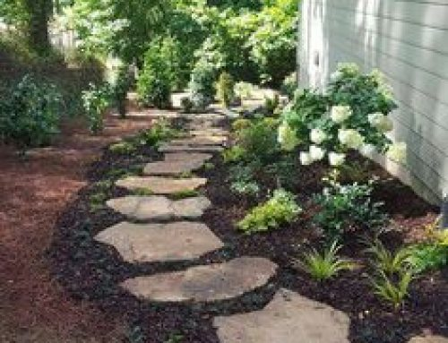 5 Great Side Yard Landscaping Ideas