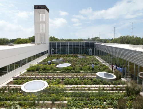 2020 Sustainable Landscape Architecture Trends