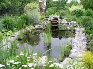 sustainable yard garden pond - Greenscape Geeks Landscaping Indianapolis
