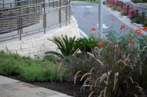 commercial landscaping hillside