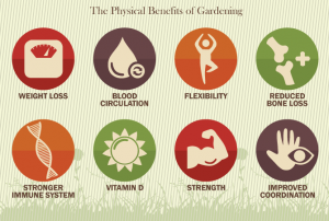 food garden benefits
