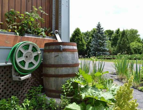 Do You Know the Benefits of Installing Rain Barrels?