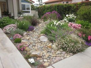 xeriscaping landscaping
