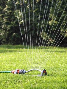 Use sprinklers early in the morning to effectively use water