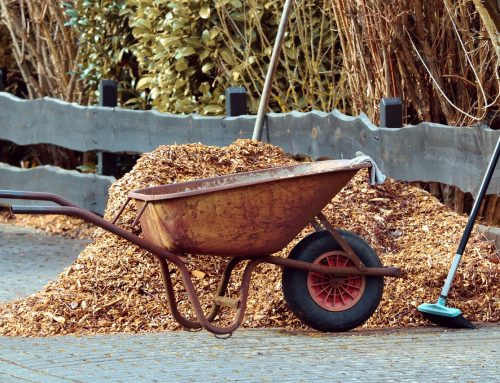 All About Mulch