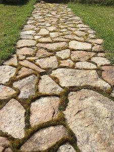 walkway, path, cobblestone path, cobblestone walkway